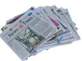 Newspaper[1]
